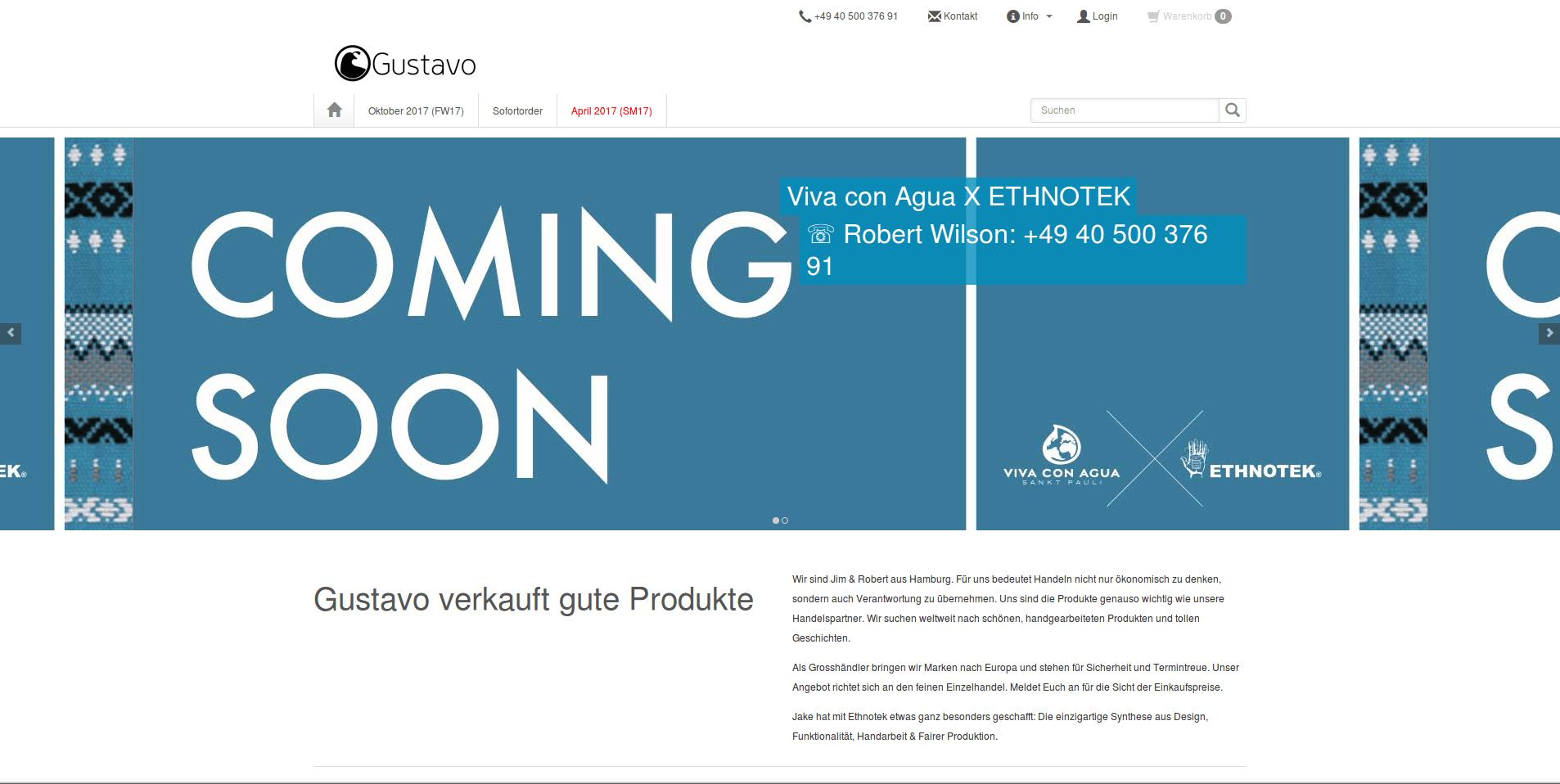 Web-Wikinger-Projektbild-gustavoshop