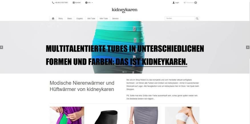 Web-Wikinger-Projektbild-kidneykaren