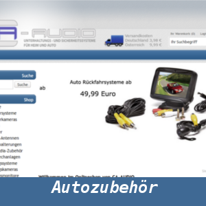 Web-Wikinger-Projektbild-ca-audio