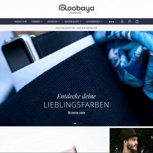 Web-Wikinger-Projektbild-roobaya