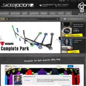 Web-Wikinger-Projektbild-skatefactory